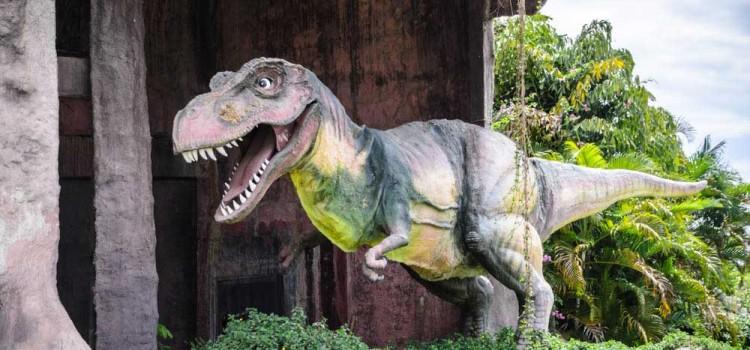 ท่องเที่ยวไปกับดินแดนอารยธรรมไดโนเสาร์แห่งแรกในประเทศไทย ที่ 'อำเภอภูเวียง จังหวัดขอนแก่น'