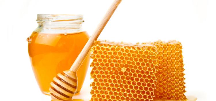 Zappnuar Story : วิธีทดสอบน้ำผึ้ง ของแท้ หรือ ปลอม