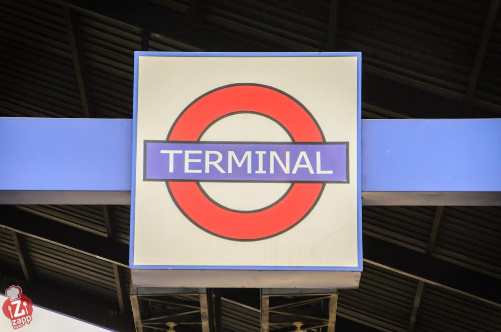 The_Terminal (1)