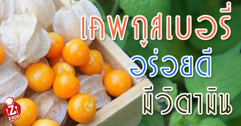 Zappnuar Healthy : เคพกูสเบอรี่ อร่อยดี มีวิตามิน
